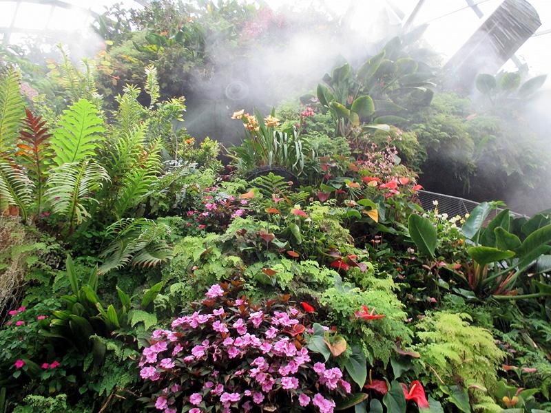 Влажность воздуха и почвы в оранжерее